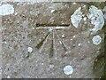 NY1750 : Benchmark near Western Terrace by Adrian Taylor