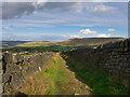 SD9422 : Pennine Bridleway near Blarney Castle by David Dixon