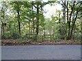 SO8383 : Kinver Gate by Gordon Griffiths