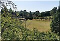 TQ5853 : Lawn in Grounds of Ightham Mote by PAUL FARMER