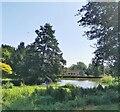 TQ5853 : Lake at Ightham Mote by PAUL FARMER