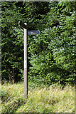 NJ4457 : Fishwives' Path Signpost by Anne Burgess