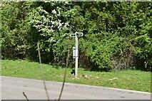 TQ5944 : Footpath signpost by N Chadwick