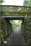 TQ6045 : Bridge over sunken path by N Chadwick