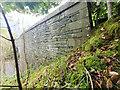 NY2524 : Keswick, Derwent bridge by David Phillips