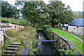 SO8702 : Thames and Severn Canal, Brimscombe by Chris Allen