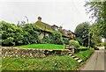 TQ5202 : House and Garden Lullington Road by PAUL FARMER