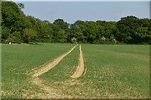 TQ6245 : Footpath to Bank Farm by N Chadwick