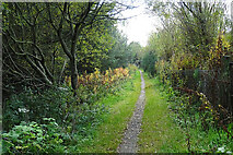 NK0057 : Old Railway near Smithyhillock by Anne Burgess