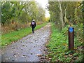 NT7534 : Cyclepath to Sprouston by Jim Barton