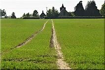 TQ6245 : Footpath to Tudeley by N Chadwick