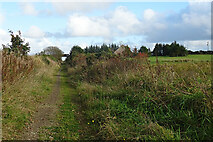 NJ9755 : Formartine and Buchan Way by Anne Burgess