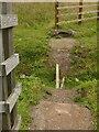 SK6840 : Broken bridge by Alan Murray-Rust