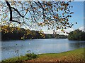 SK6374 : Clumber Lake by Graham Hogg