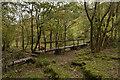 SK1373 : Footbridge in Monksdale, Derbyshire by Andrew Tryon