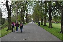 TF6219 : The Walks by N Chadwick
