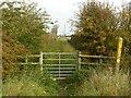 SK7429 : Bridleway near Hose, looking north east by Alan Murray-Rust