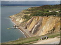 SZ3085 : Bench overlooking Alum Bay by Malc McDonald