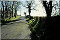 H4657 : Kilnahusogue Road, Aghafad by Kenneth  Allen