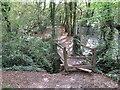 SZ5193 : Stile and bridge near Whippingham by Malc McDonald