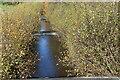 SO1103 : Weirs, Nant Bargod Rhymni, Parc Cwm Darran by M J Roscoe