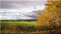 NH5757 : Farmland near Alcaig, Black Isle by Julian Paren