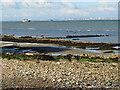 SZ6588 : On the beach at Bembridge by Malc McDonald