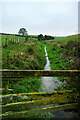 NZ4632 : Tributary to Dalton Beck by Andy Waddington