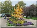 TQ3277 : Autumn colours in Burgess Park by Malc McDonald