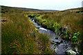 NZ0503 : Skegdale Beck by Andy Waddington