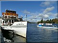 SD4096 : Swan at Bowness pier by Stephen Craven