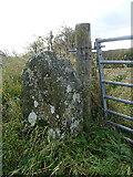 NJ5047 : Stone Gatepost by Anne Burgess