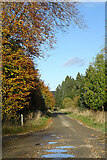 NJ5143 : Towards Roadburn by Anne Burgess