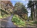 SS7890 : Mynydd Emroch by Alan Hughes