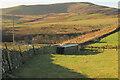 NT9715 : Shed and pen near Hartside by Derek Harper