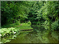 SO8685 : Staffordshire and Worcestershire Canal near Stourton in Staffordshire by Roger  Kidd