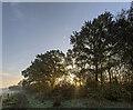 TF0820 : An hour after sunrise by Bob Harvey