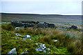 NY8910 : Sheepfold on Wool Busk by Andy Waddington