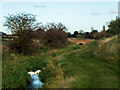 SK9567 : North Hykeham Pump Drain, approaching Manor Farm by Oliver Mills