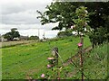NZ0647 : Roadside near Spring Well by Robert Graham