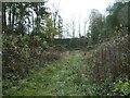 SK3523 : Southern end, Sir Henry Harpur's limeyard, Ticknall by Christine Johnstone