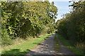 TQ5806 : The Cuckoo Trail by N Chadwick