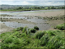SY2591 : Axe Estuary - Low Tide by Colin Smith