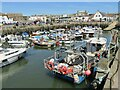 SY4690 : West Bay - Harbour by Colin Smith