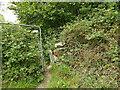 SE1224 : Squeeze stile below Sutcliffe Wood Lane by Stephen Craven
