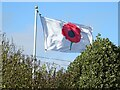 SO8331 : A British Legion Poppy Flag by Philip Halling