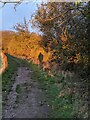 TF0820 : Me and my Shadow by Bob Harvey