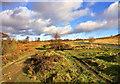SE1239 : Millennium Way, Glen Road, Airedale by Scott Robinson