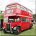 SU7240 : Alton Bus Rally 2019 - London RT by Colin Smith