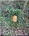 SO9401 : Milestone, A 419 Sapperton area by Mr Red